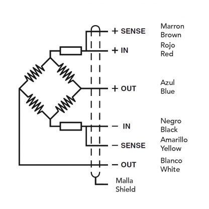 Conexión célula